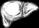 image-3 Масла первого холодного отжима - №1 в Украине